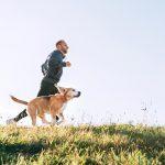 Ein Mann joggt mit seinem Golden Retriever über eine Wiese.